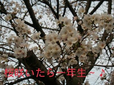 f0239713_2141412.jpg