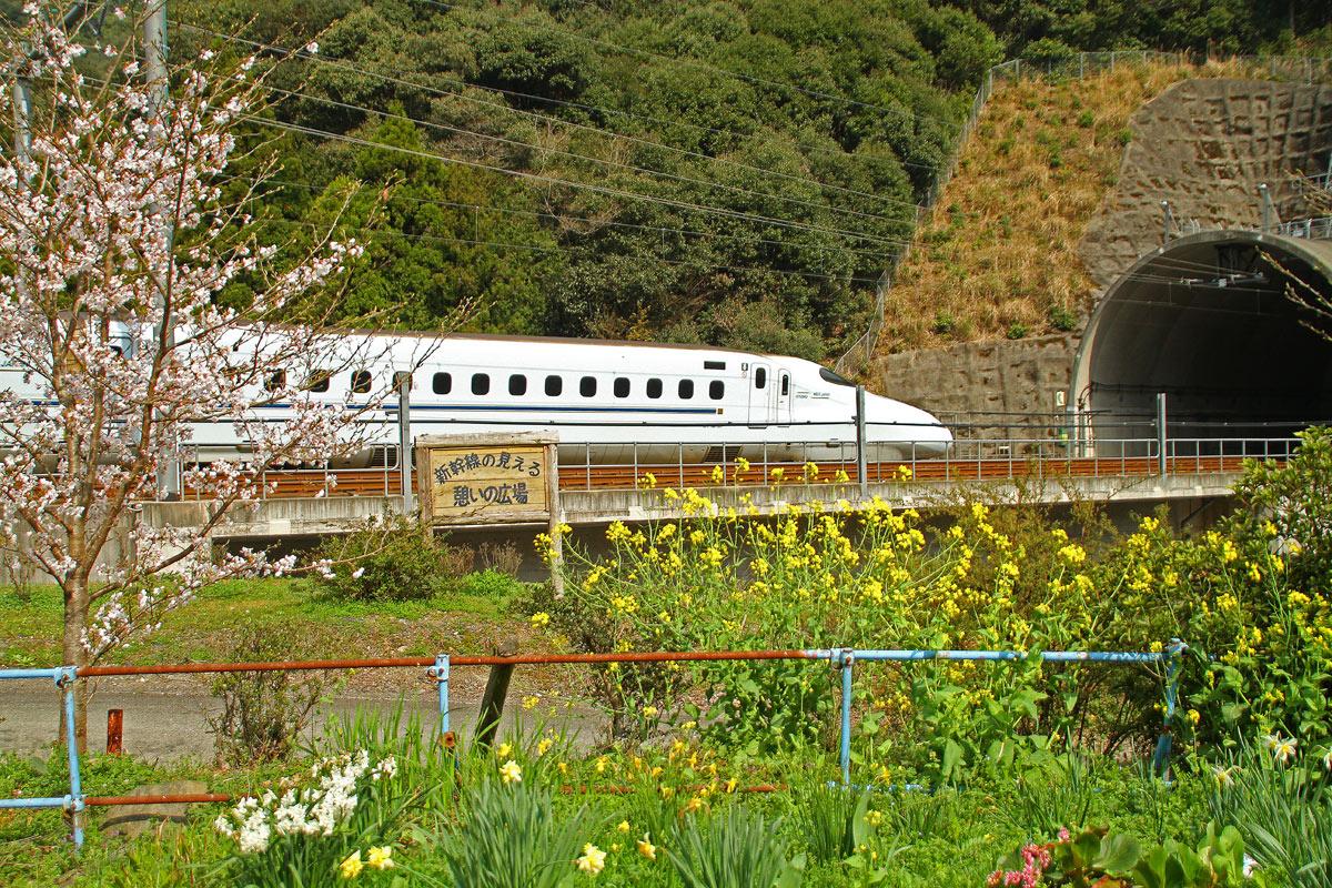 春の新幹線。_b0044115_13162783.jpg