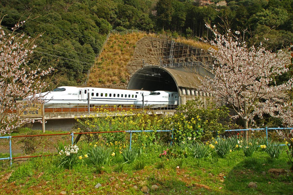 春の新幹線。_b0044115_1324744.jpg