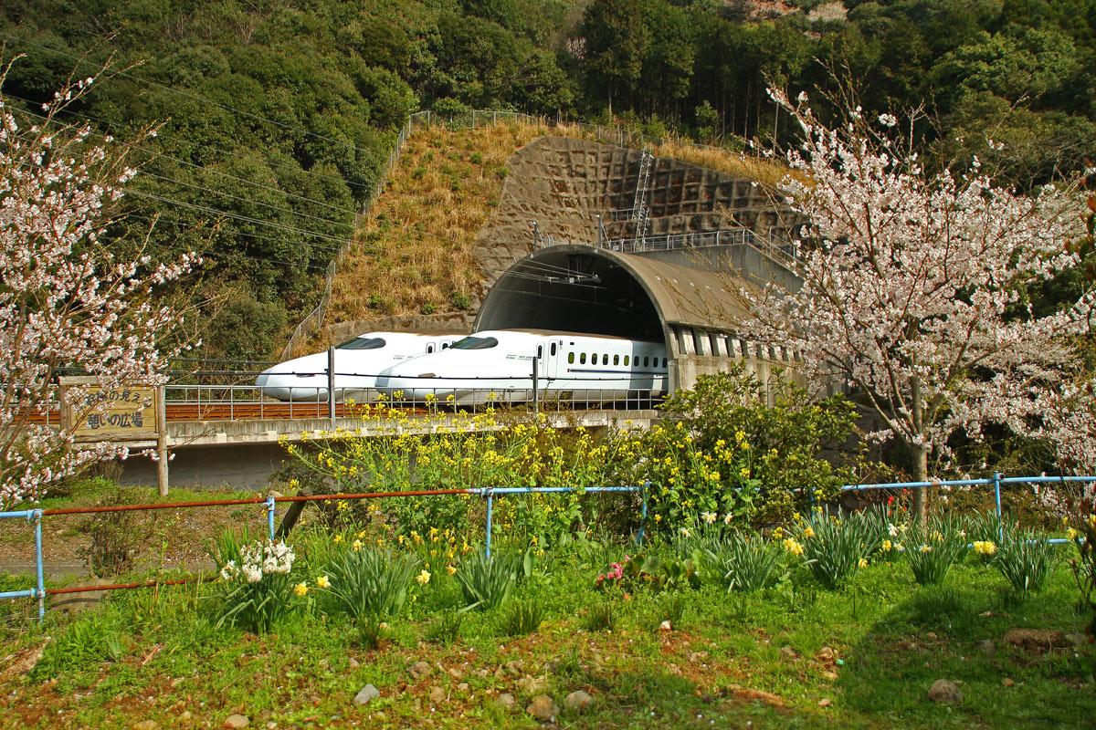 春の新幹線。_b0044115_13284623.jpg