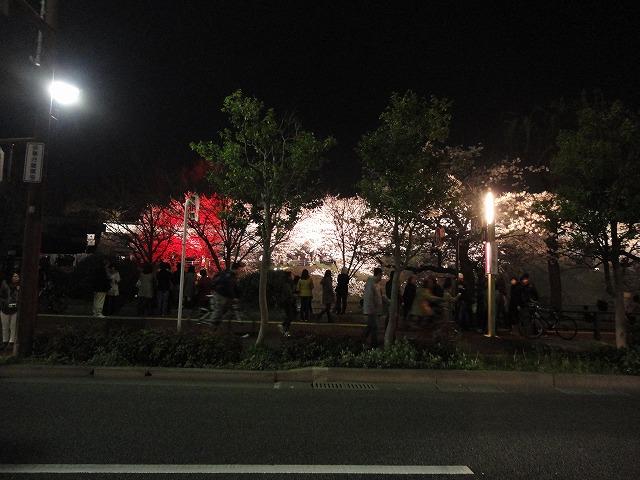 桜の季節になりました!!_a0110720_18282839.jpg