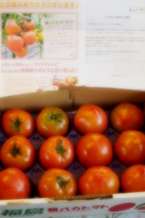 【いわきの親ばかトマト当選!!で 春色サラダを作りました♪】お写真はソフトフォーカス撮りです^^_b0033423_20102477.jpg