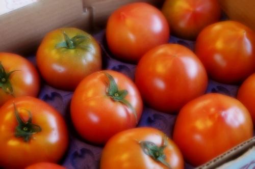 【いわきの親ばかトマト当選!!で 春色サラダを作りました♪】お写真はソフトフォーカス撮りです^^_b0033423_2095780.jpg