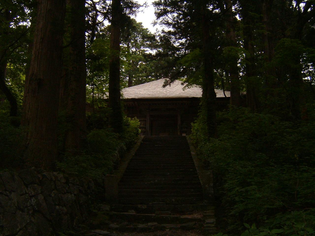 鳥取県大山寺周辺の植物   by (岡田)_c0239329_1454669.jpg