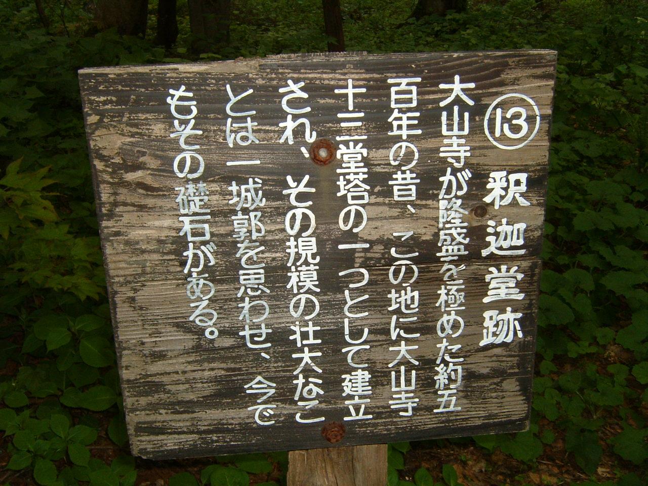 鳥取県大山寺周辺の植物   by (岡田)_c0239329_1465751.jpg