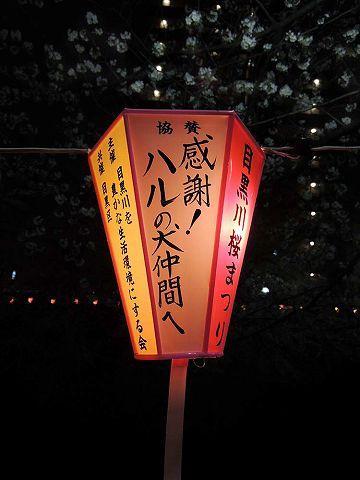 夜桜プチ宴会_c0062832_4565762.jpg
