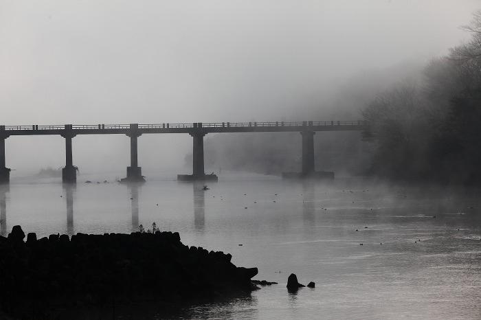 霧の中_a0294534_20102529.jpg