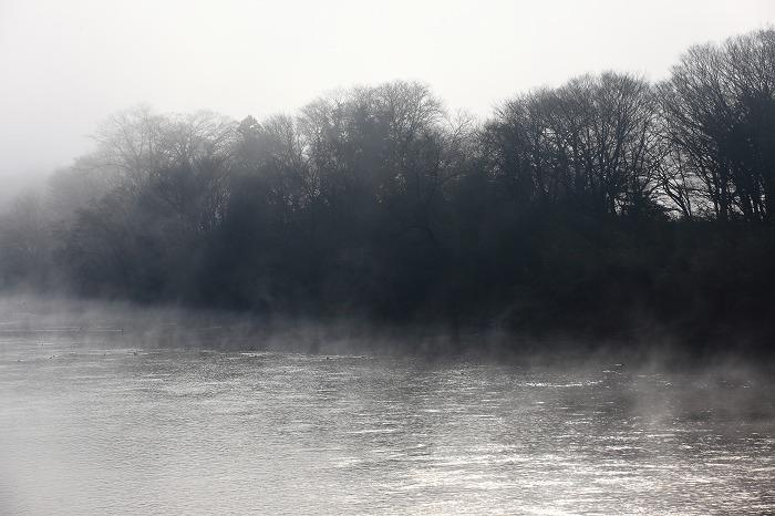 霧の中_a0294534_2010593.jpg