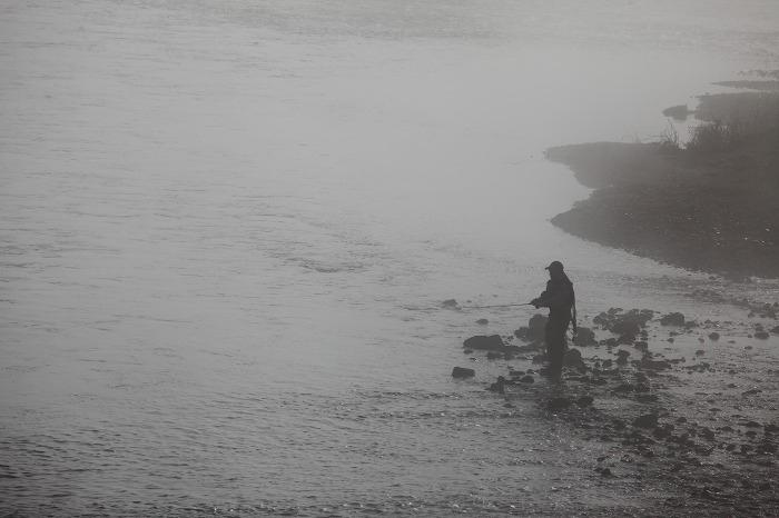霧の中_a0294534_20113594.jpg