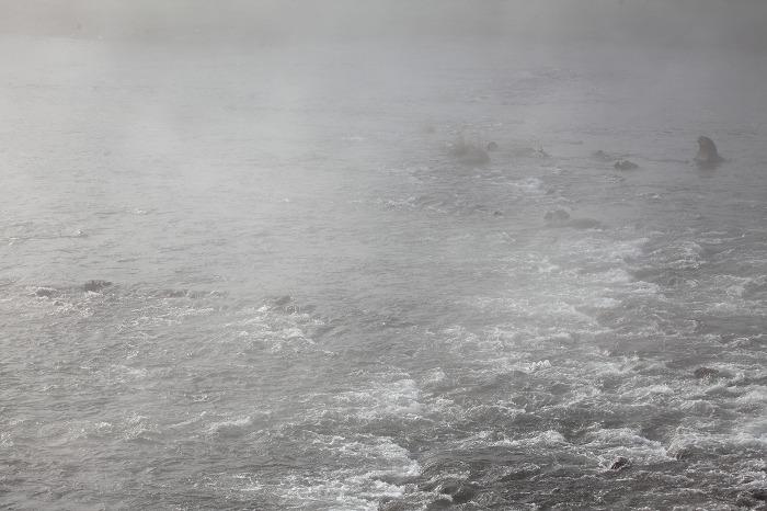 霧の中_a0294534_20122986.jpg