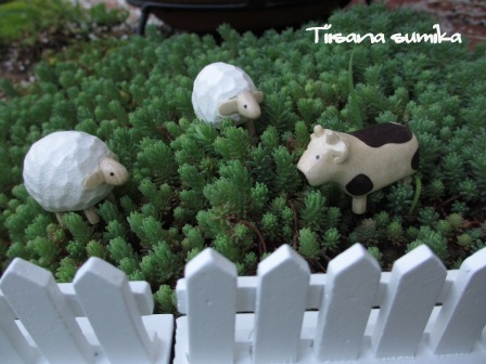 """春の庭に""""羊が1匹~""""""""羊が2匹~""""_a0243064_2073534.jpg"""