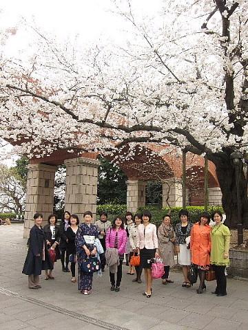 世の中は3日見ぬ間の桜かな。_b0141773_2218747.jpg