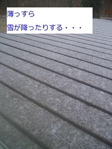 b0200310_11415013.jpg