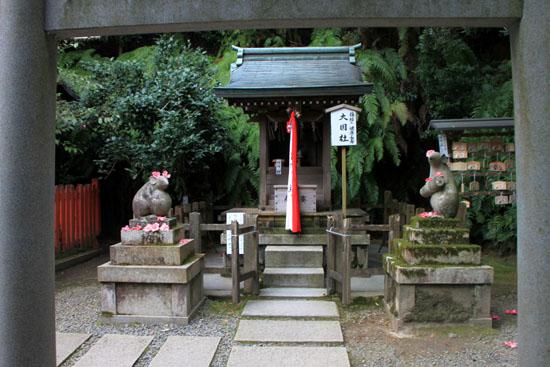 盛りのしだれ3 大豊神社_e0048413_1437619.jpg