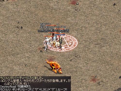 b0056117_631589.jpg