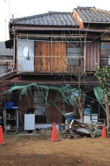 都電雑司ヶ谷  立ち去りがたい町のネコ_b0061717_1342034.jpg