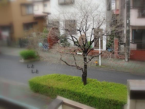 b0226221_20171343.jpg