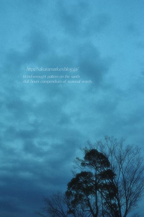 暗雲の春空。_f0235723_19482557.jpg