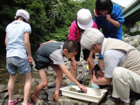 平成24年度「森と水のシンフォニー環境基金」活動実績_b0206037_104241.jpg