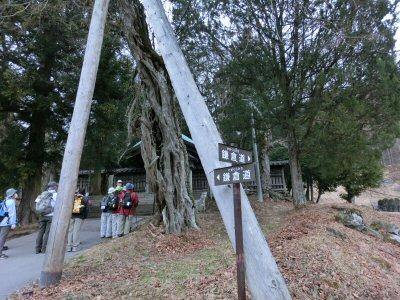 諏訪湖湖畔・七福神めぐり_f0019247_9383417.jpg