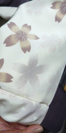 母と法金剛院へ・お客様の桜や蝶の着物姿。_f0181251_2051161.jpg