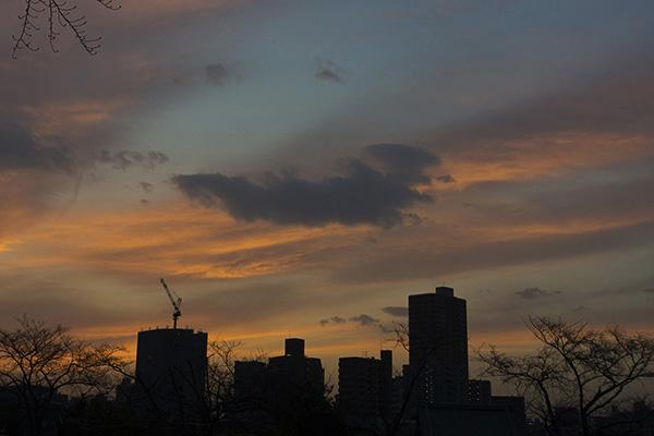 2013年3月 課題写真 「今日見た空は」_f0168968_22235213.jpg