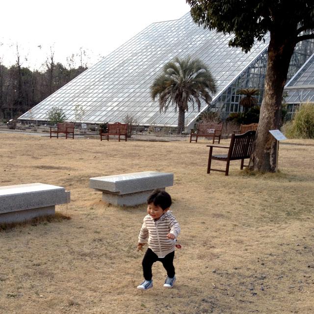 筑波実験植物園_f0088873_17545561.jpg