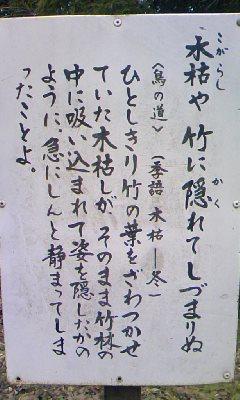 a0005484_20133577.jpg