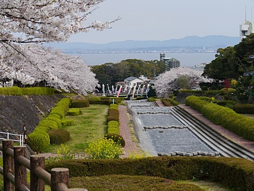 別府の桜 その2 境川辺り_b0175688_2316312.jpg
