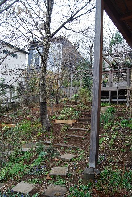 3月の庭…_c0124100_23322440.jpg