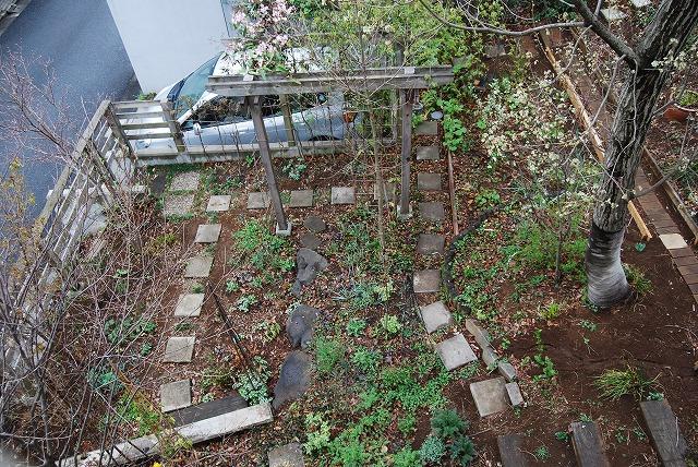 3月の庭…_c0124100_2332476.jpg