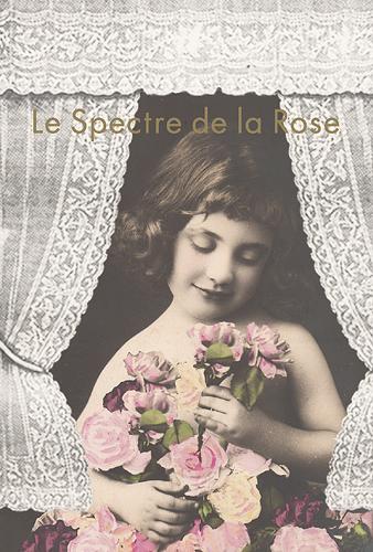薔薇の精  Le Spectre de la Rose_c0203401_14324367.jpg