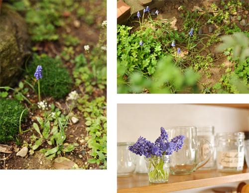 春の庭_d0174704_19125329.jpg