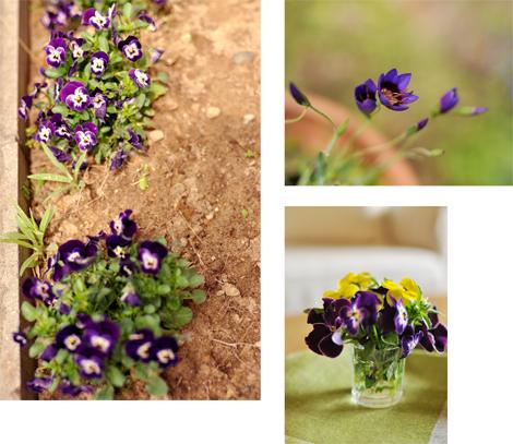 春の庭_d0174704_1917489.jpg