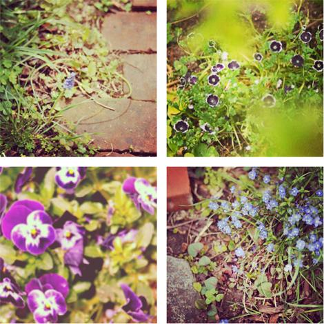 春の庭_d0174704_19213451.jpg