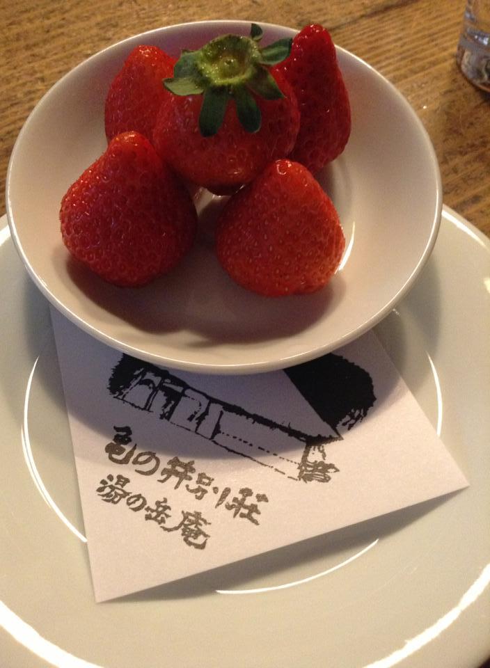 桜咲く卒業旅行_d0116009_9161276.jpg