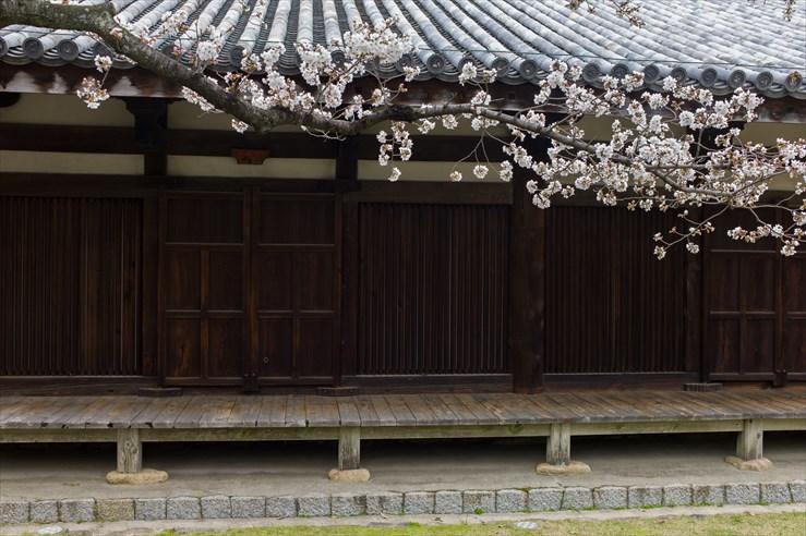 奈良旅行 その1 元興寺_e0170058_17142658.jpg