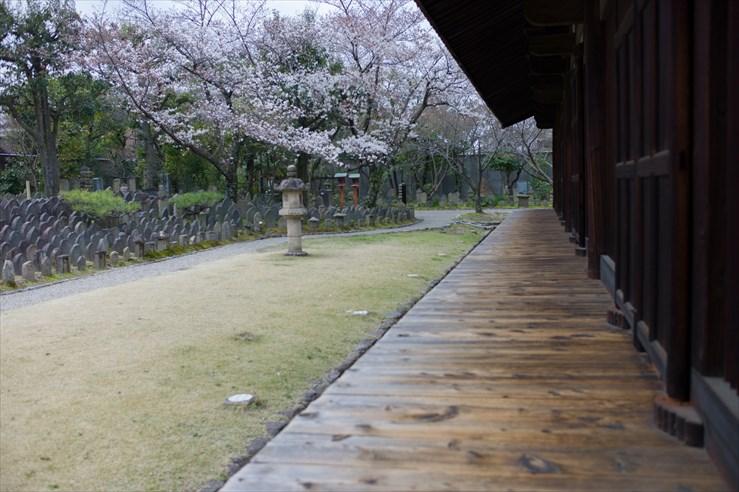 奈良旅行 その1 元興寺_e0170058_17151892.jpg