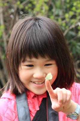 ■■ 桜 盆 ■■_c0195662_22432912.jpg
