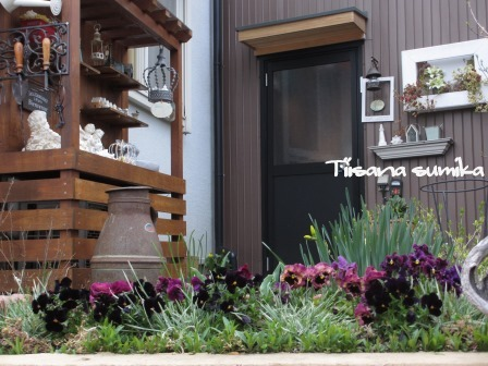 春めいた庭♪_a0243064_23182539.jpg