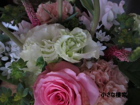 春めいた庭♪_a0243064_23473190.jpg