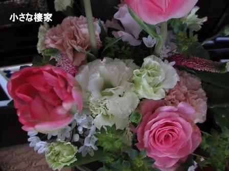 春めいた庭♪_a0243064_23481372.jpg