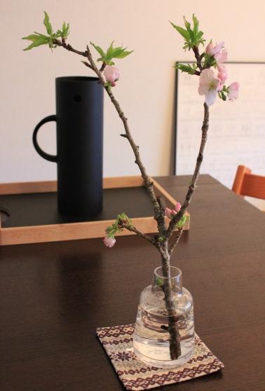 ・春の食卓。_d0245268_14215076.jpg