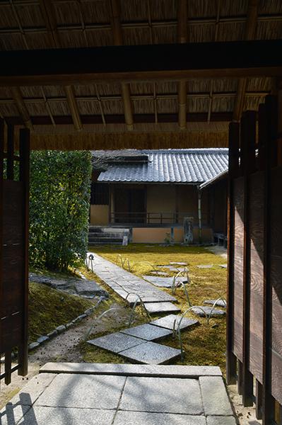 冬の京都_d0021969_19383890.jpg