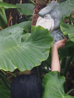 神戸花鳥園・作品写真撮影会レポート_d0123492_22275418.jpg
