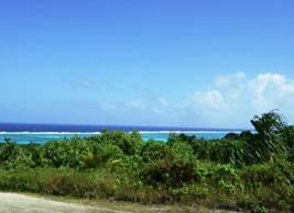 ヤップ島の巨大開発に反対するオンライン署名募集中_a0043520_20495570.jpg
