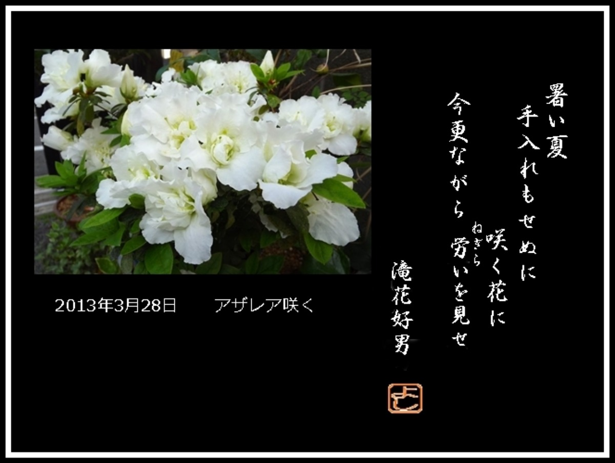 e0033229_1047395.jpg