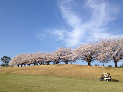 座間キャンプゴルフ場_a0279635_054749.jpg