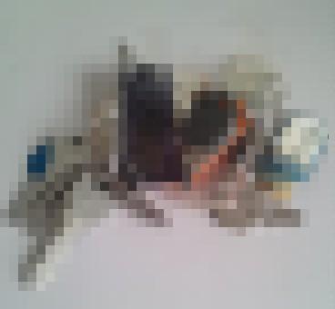 f0064937_828559.jpg