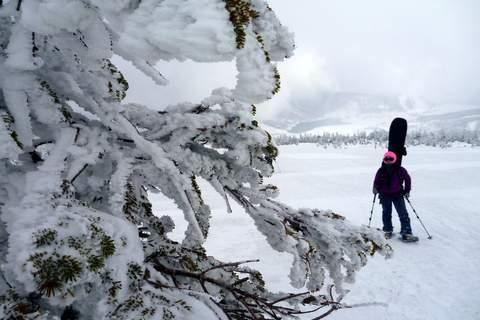 【滑走レポ 2013.3.26】2012/13シーズンのラストパウダーを狙って!@かぐら_e0037849_22533385.jpg